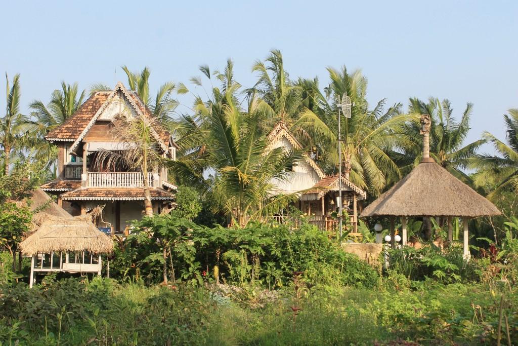 Accommodation Rice Paddy Fields Ubud Bali
