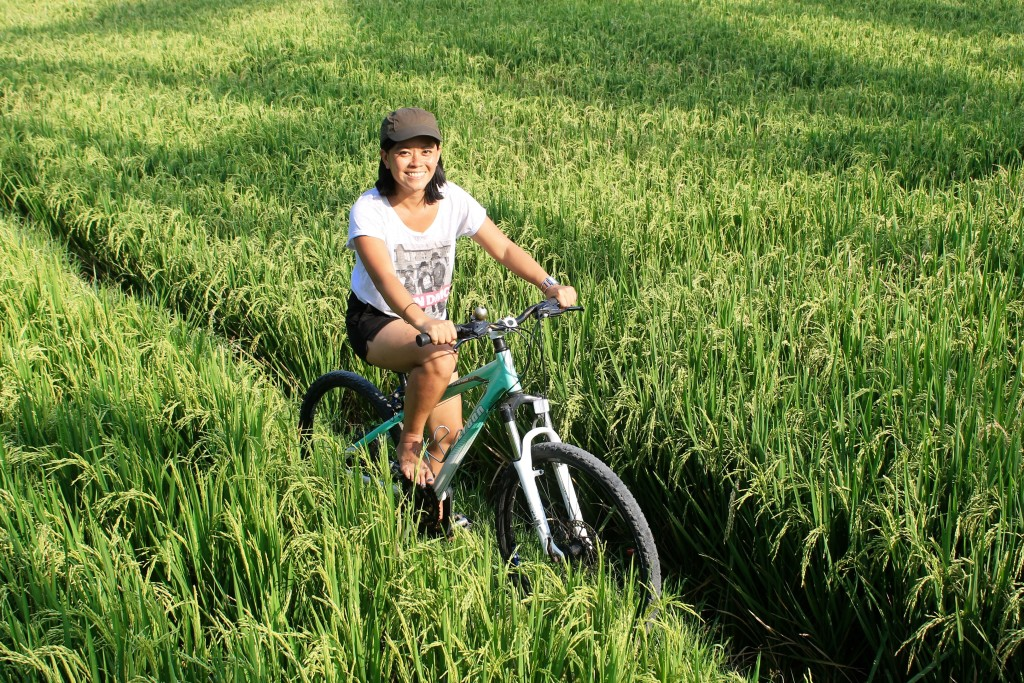 Bicycle Riding Rice Paddy Fields Ubud Bali