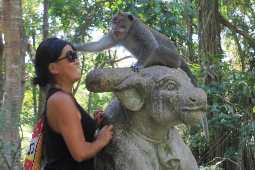 Eye Contact Monkey Forest Ubud Bali