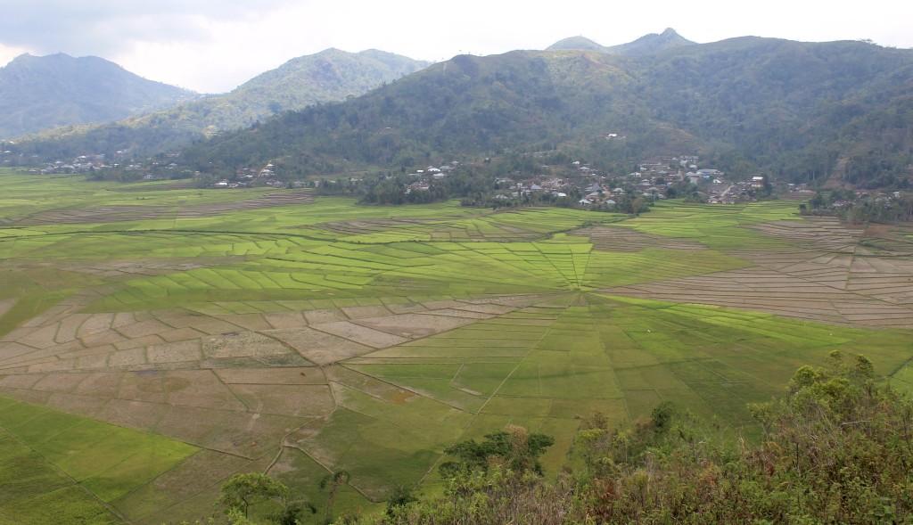 Lingko Spider Web Rice Fields, Cancar