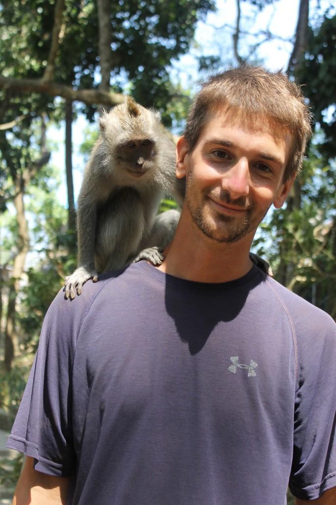 Man Monkey Forest Ubud Bali