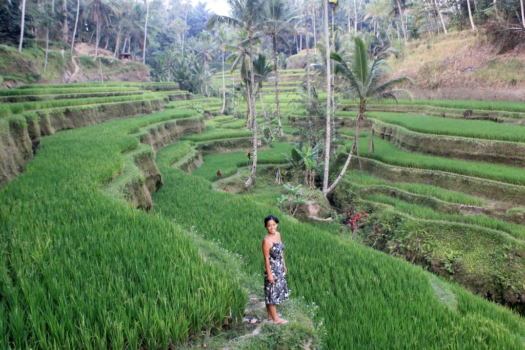 Tegelalang Rice Terraces Ubud Bali