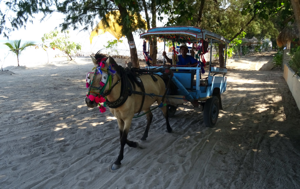 Gili's version of Uber