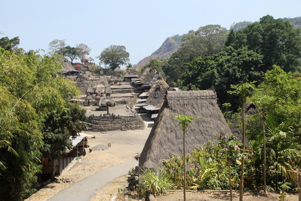 First View of Bena Village