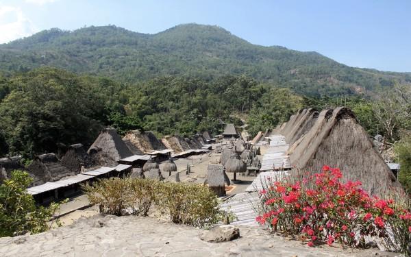 View of Bena Village