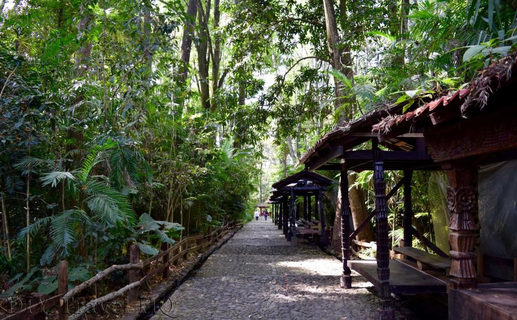 Barranca Del Cupatitzio Pathway