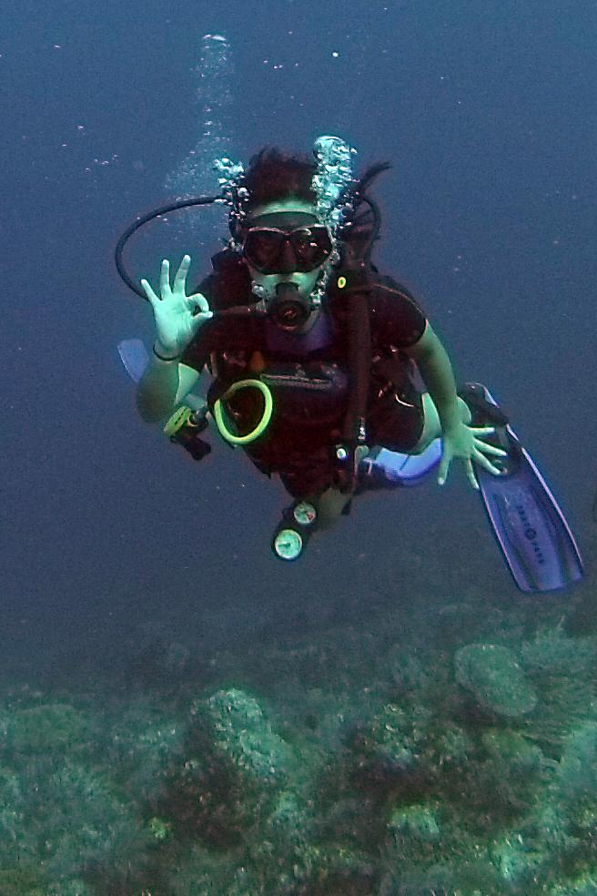 Diving Komodo National Park Diver