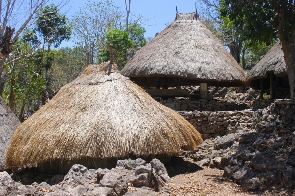 Tamkessi Village Beehive Huts