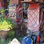 Ubud to Banyuwangi via Gilimanuk & Menjangan