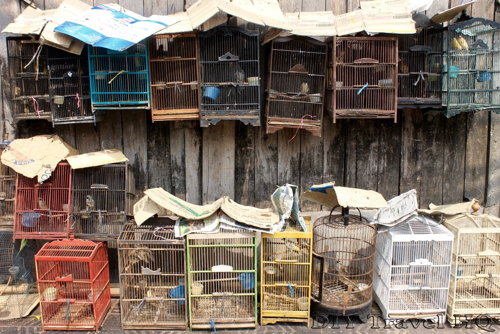 Bird cages at the bird market in Yogya