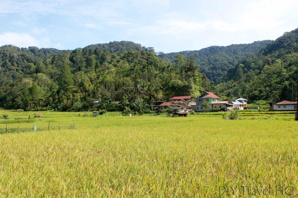 Landscape at Batung Palupah Bukittinggi