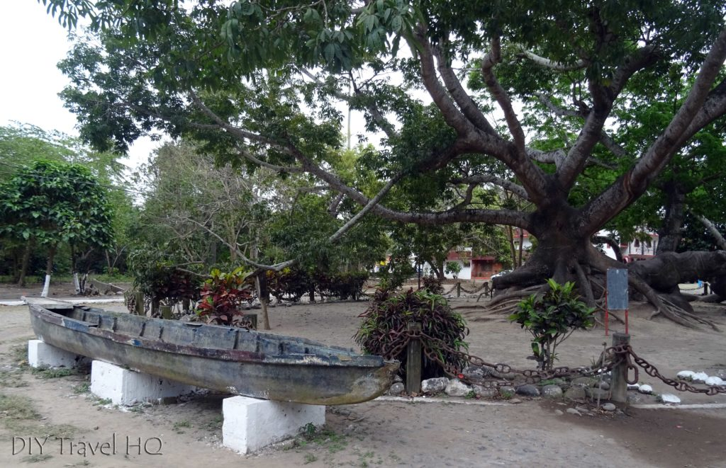 La Antigua Cortez Anchored Tree