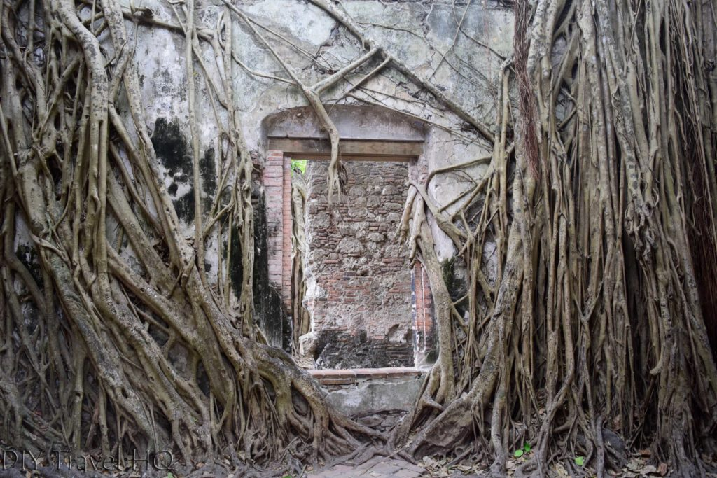 La Antigua Cortez's House Doorway and Roots