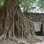 Cempoala & La Antigua: Cortez's Footprints