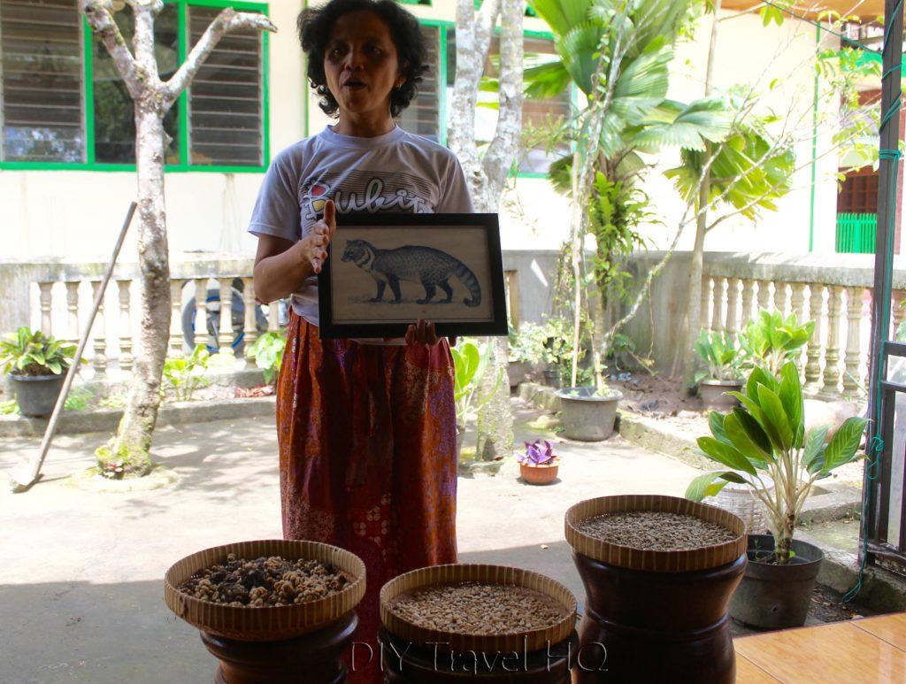 Kopi Luwak presentation in Bukittinggi