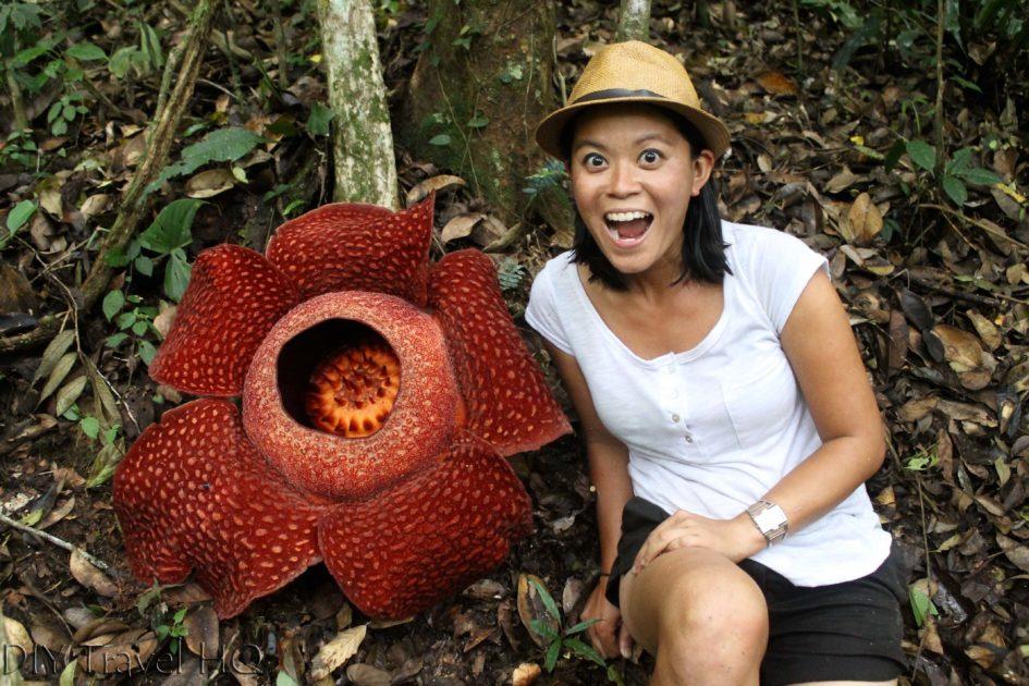 Me with Rafflesia in Bukittinggi