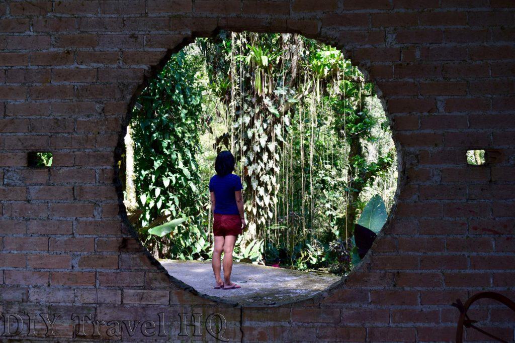 Xilitla Las Pozas Through the Looking Glass