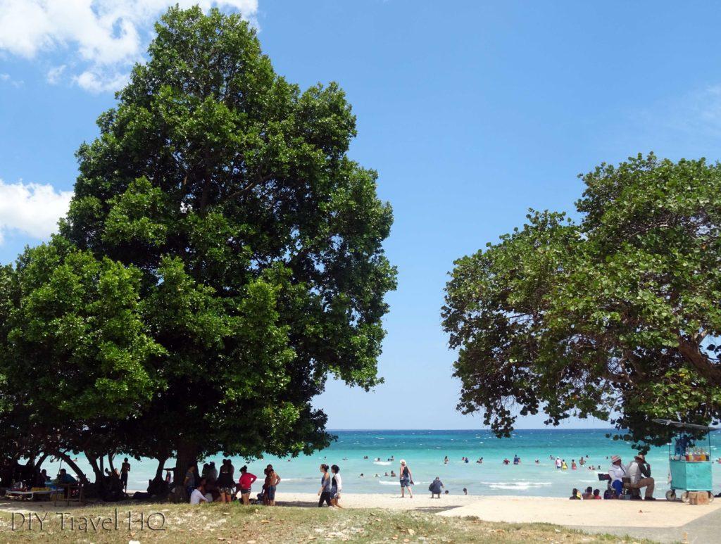 Playa Larga Beach with Shady Trees