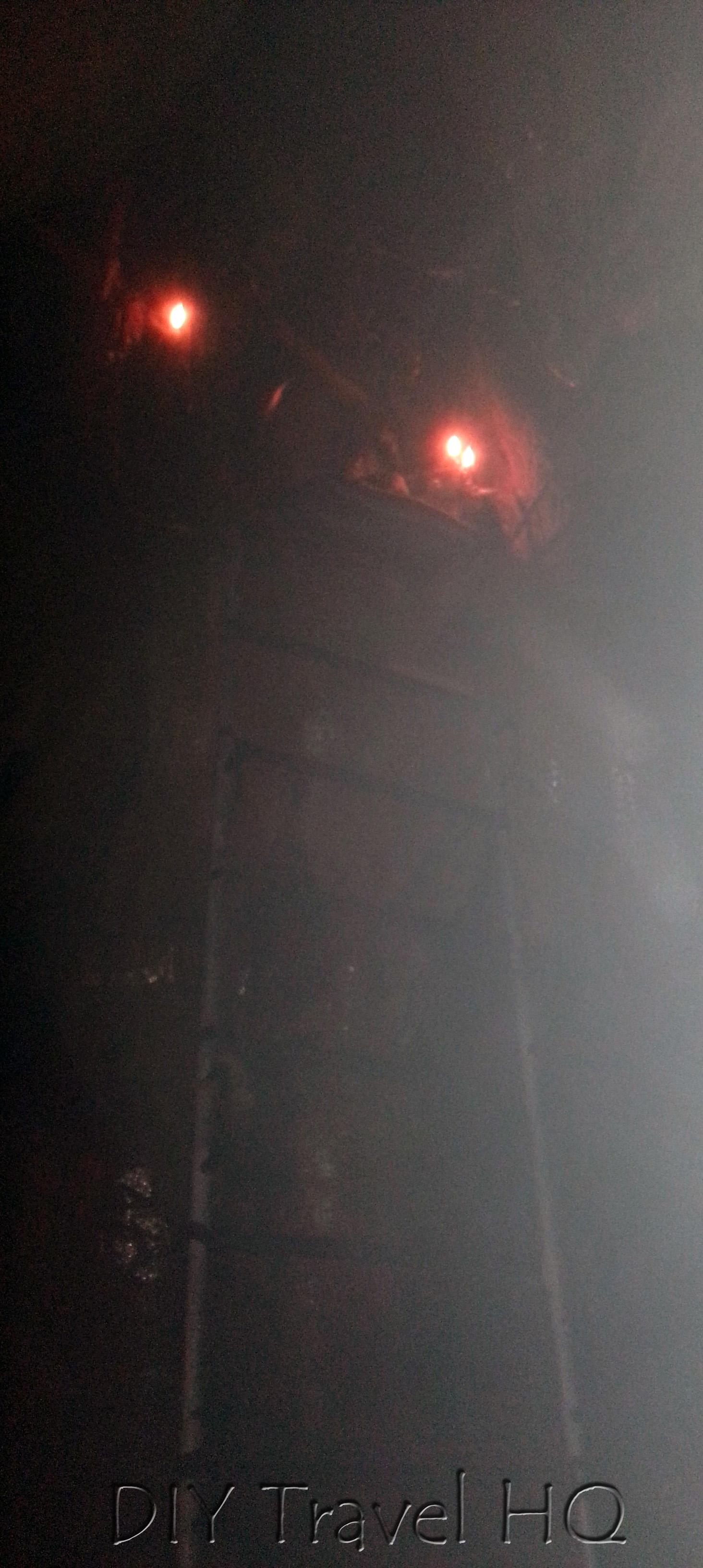 Kanba Cave Ladder
