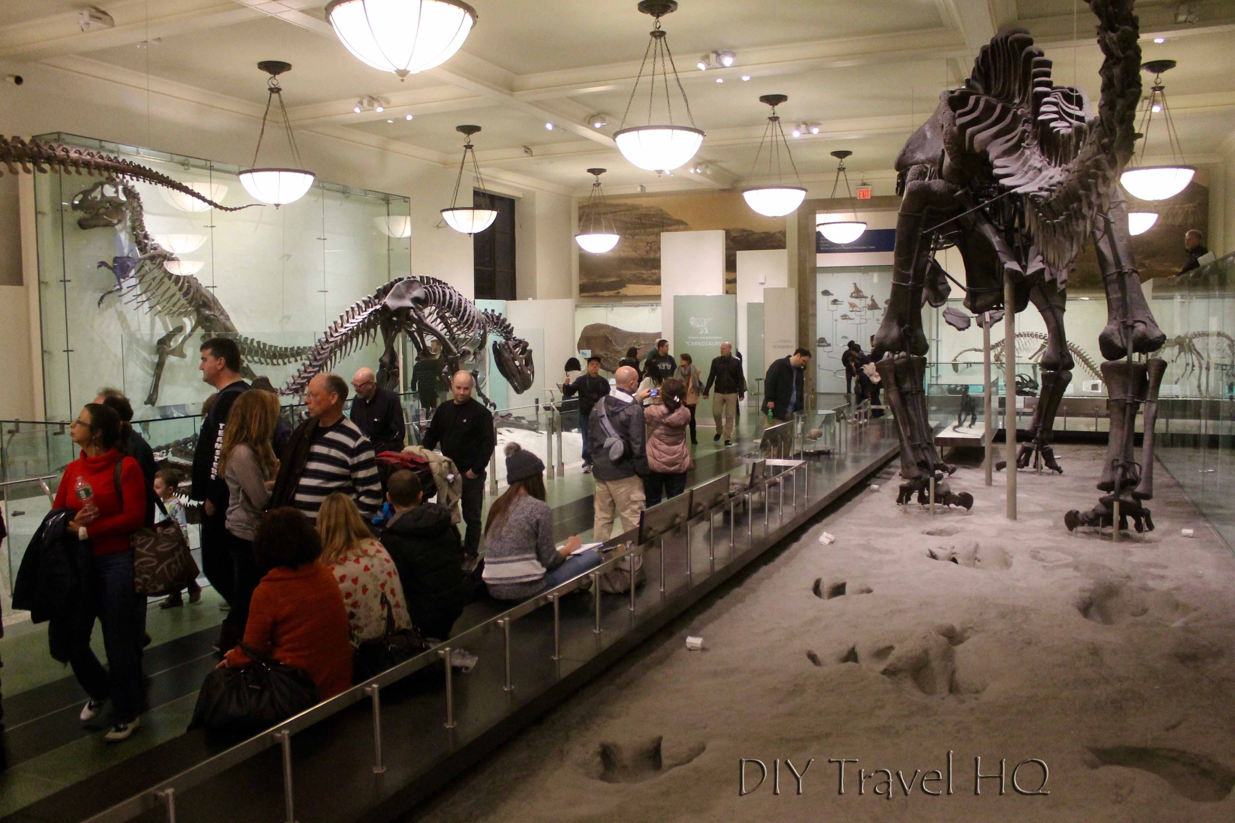 Museum Natural History Nyc Free Admission