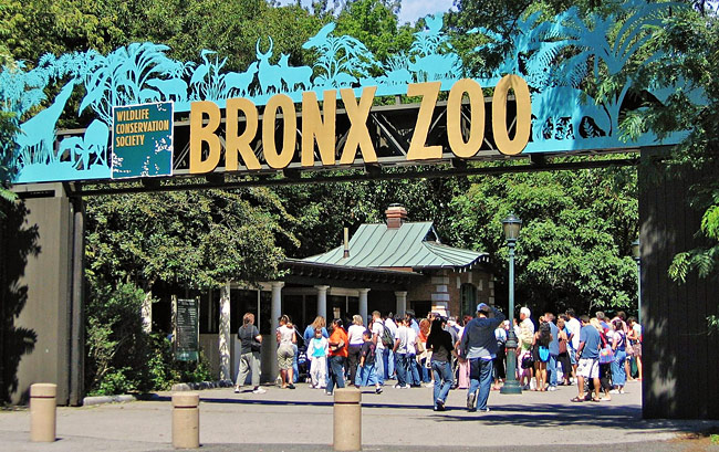 Bronx Zoo Free on Wednesday