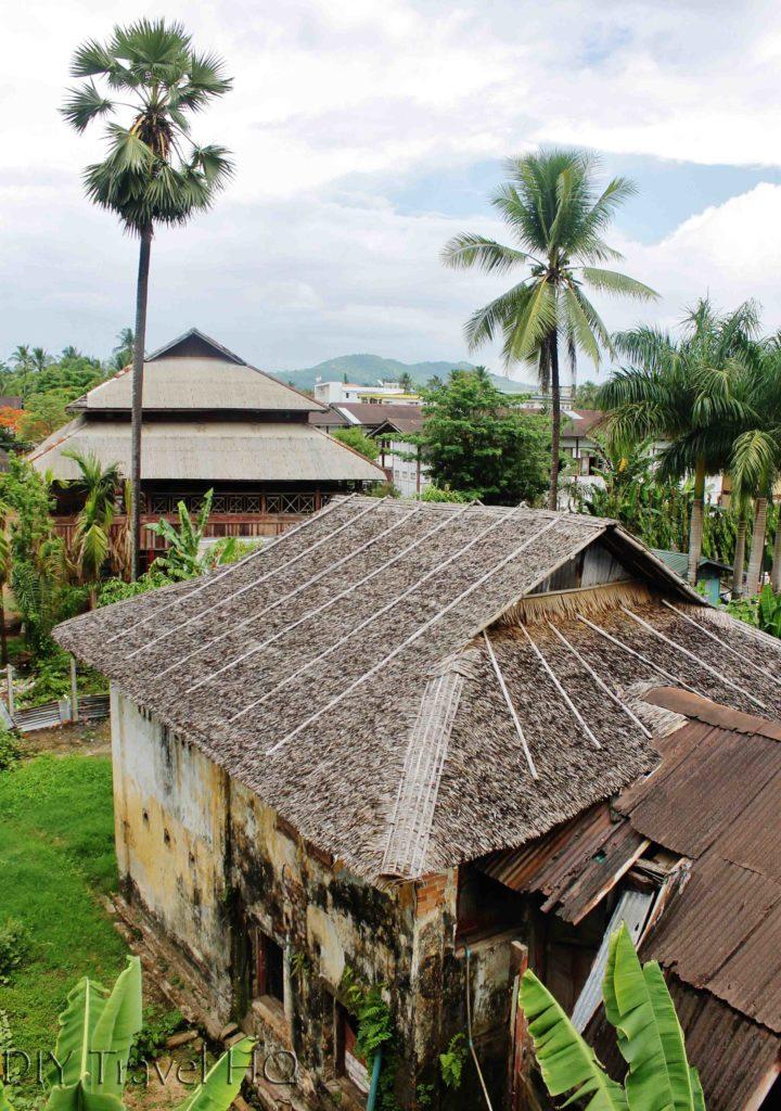 Dawei thatch houses & palms