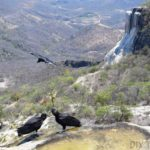 Hierve el Agua: Petrified Waterfalls in Oaxaca