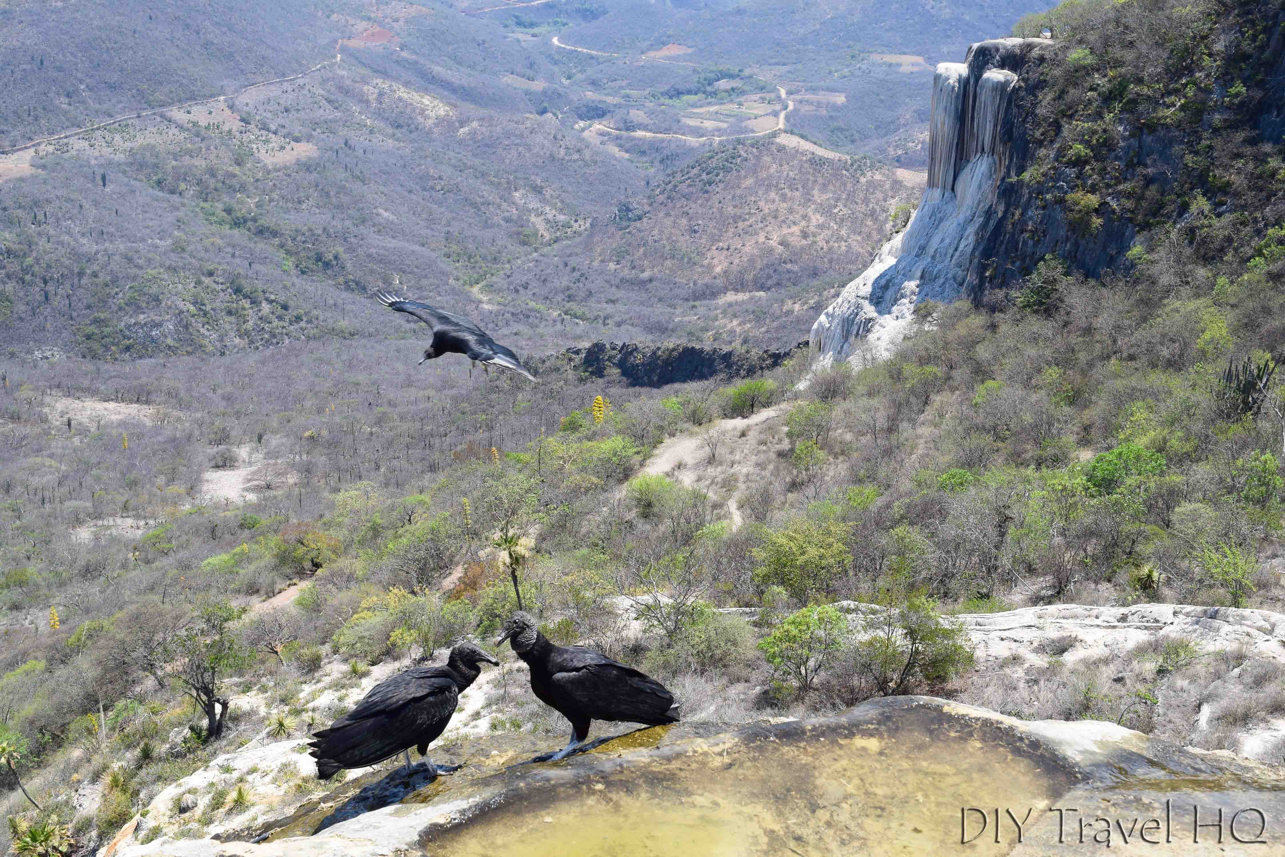 Hierve el Agua Petrified Waterfall and Vultures