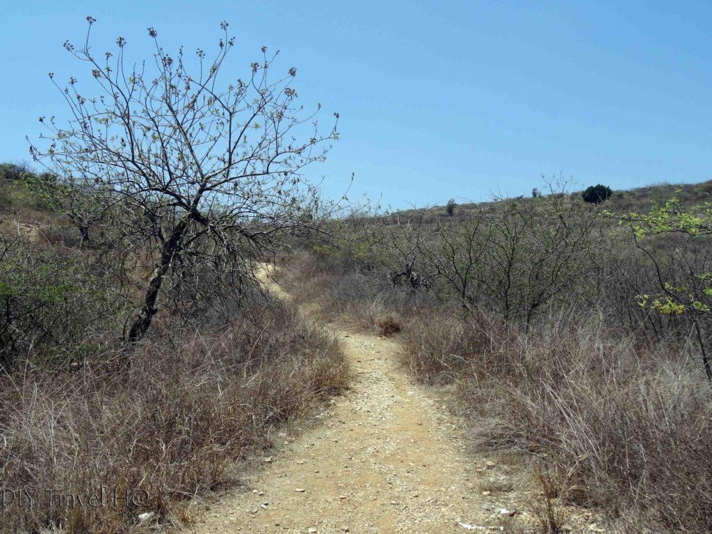 Monte Alban Ruins DIY Hike Shortcut to Main Road