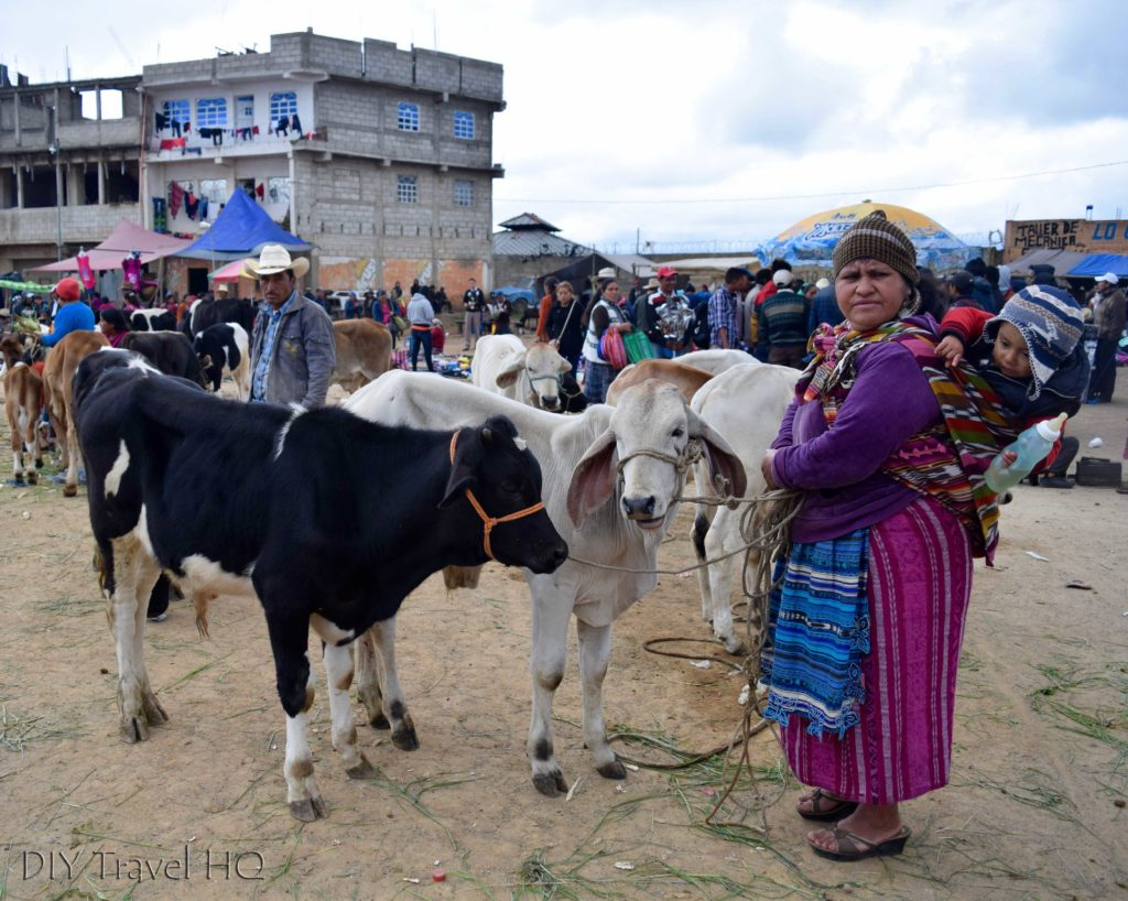 San Francisco El Alto Animal Market Cow Saleswoman