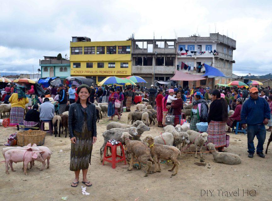 San Francisco El Alto Animal Market with Sheena