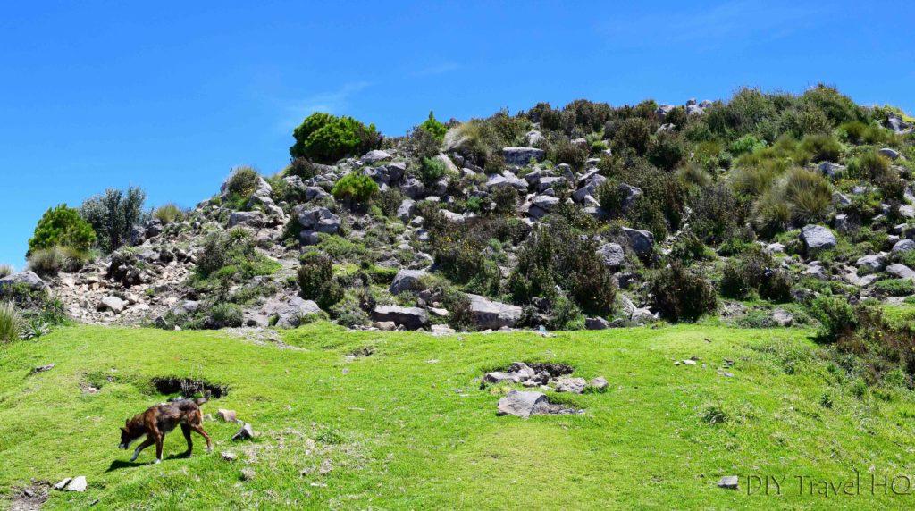 Volcan Santa Maria Camping Spot