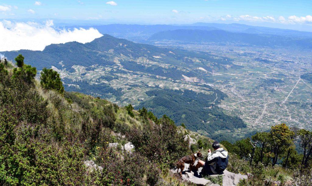 Volcan Santa Maria Guide Dog