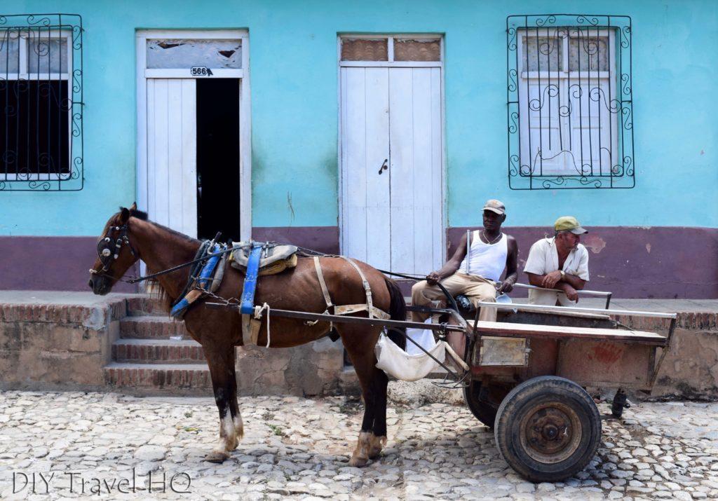 Horse Carts in Trinidad