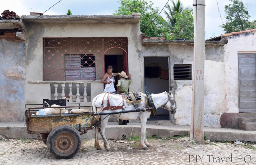 Horse cart & neighbours in Trinidad
