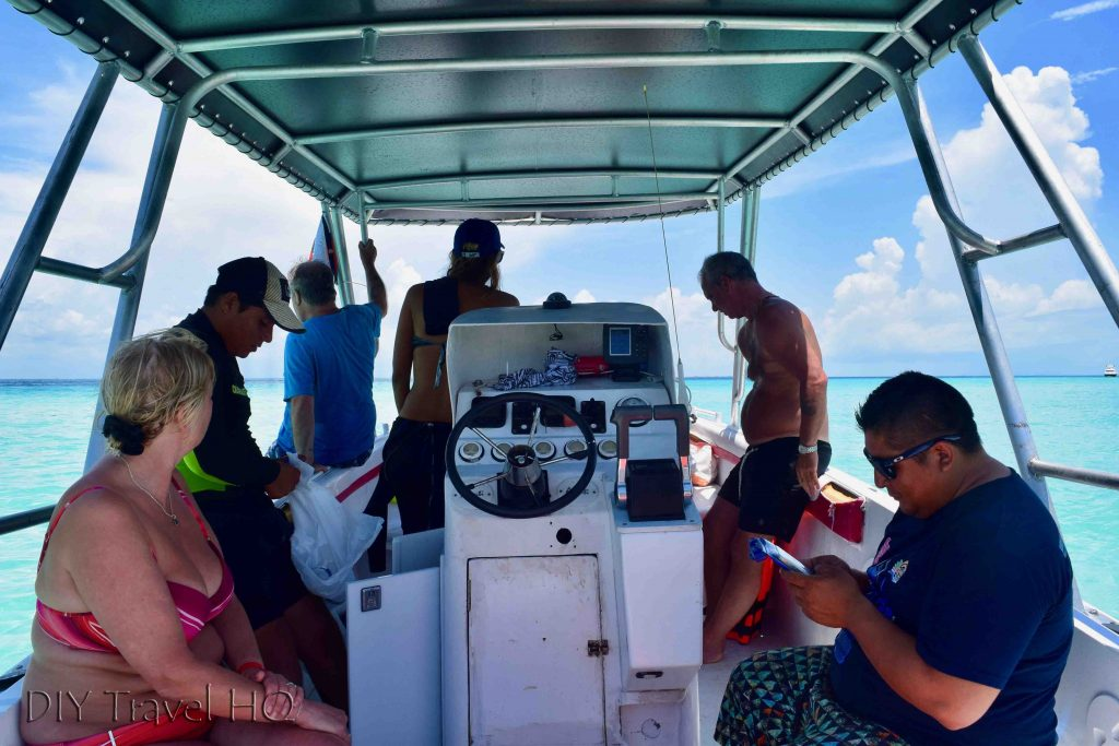 Whale shark tour boat