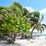 Things to do on Caye Caulker: Backpacker's Travel Guide