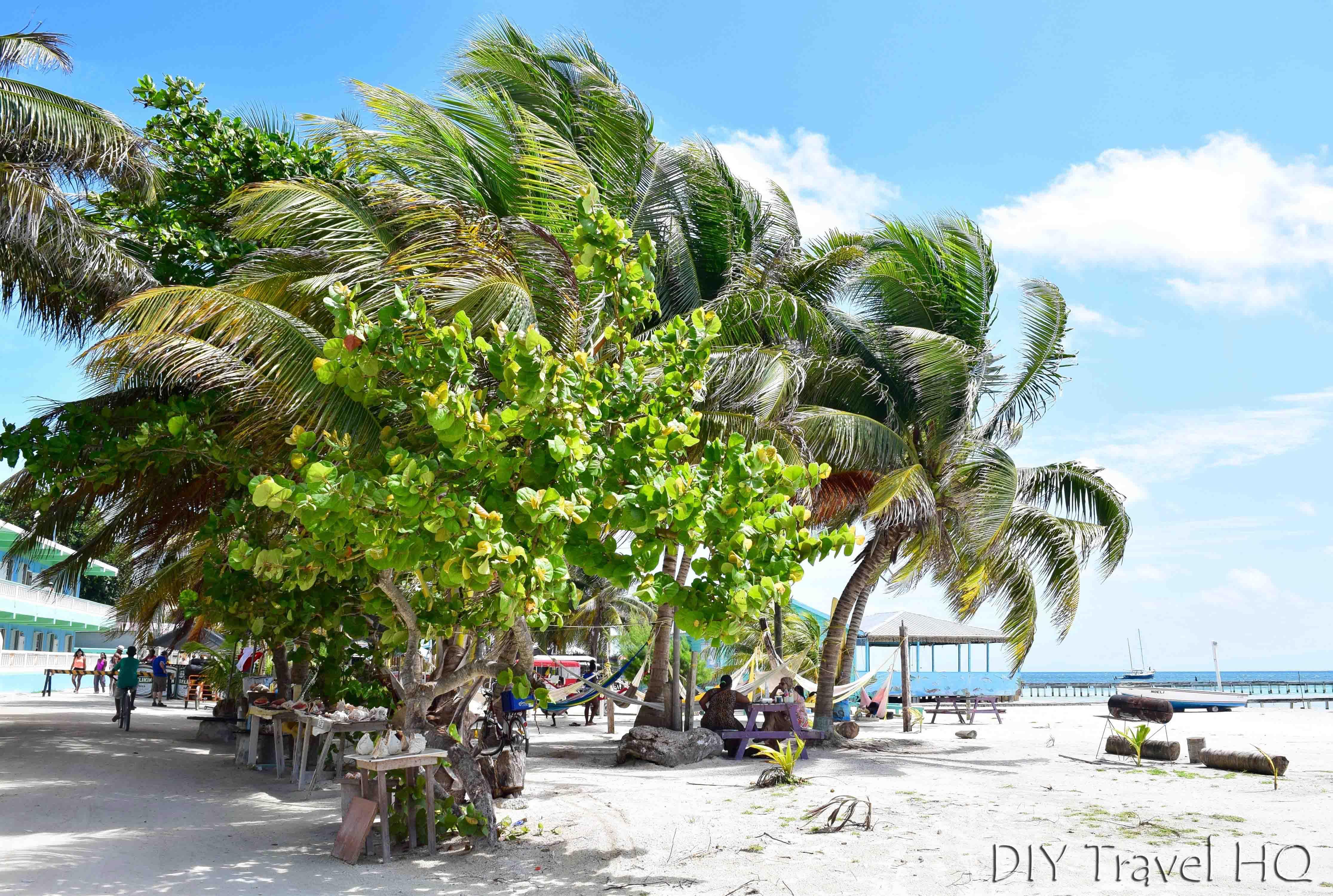Caye Caulker Travel Guide: Budget Island Paradise! - DIY Travel HQ