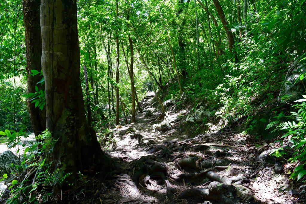 Finca el Paraiso Path