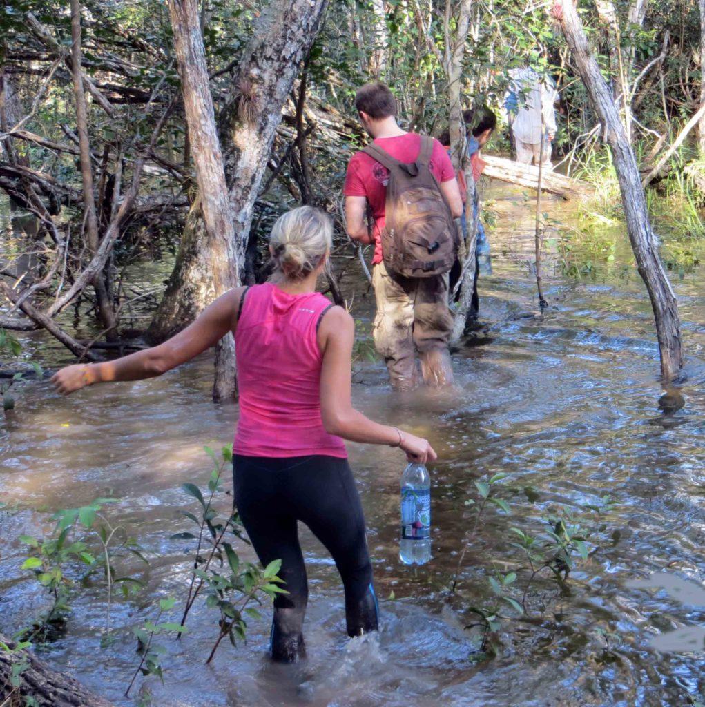 Hike to El Mirador Wet Season Trail