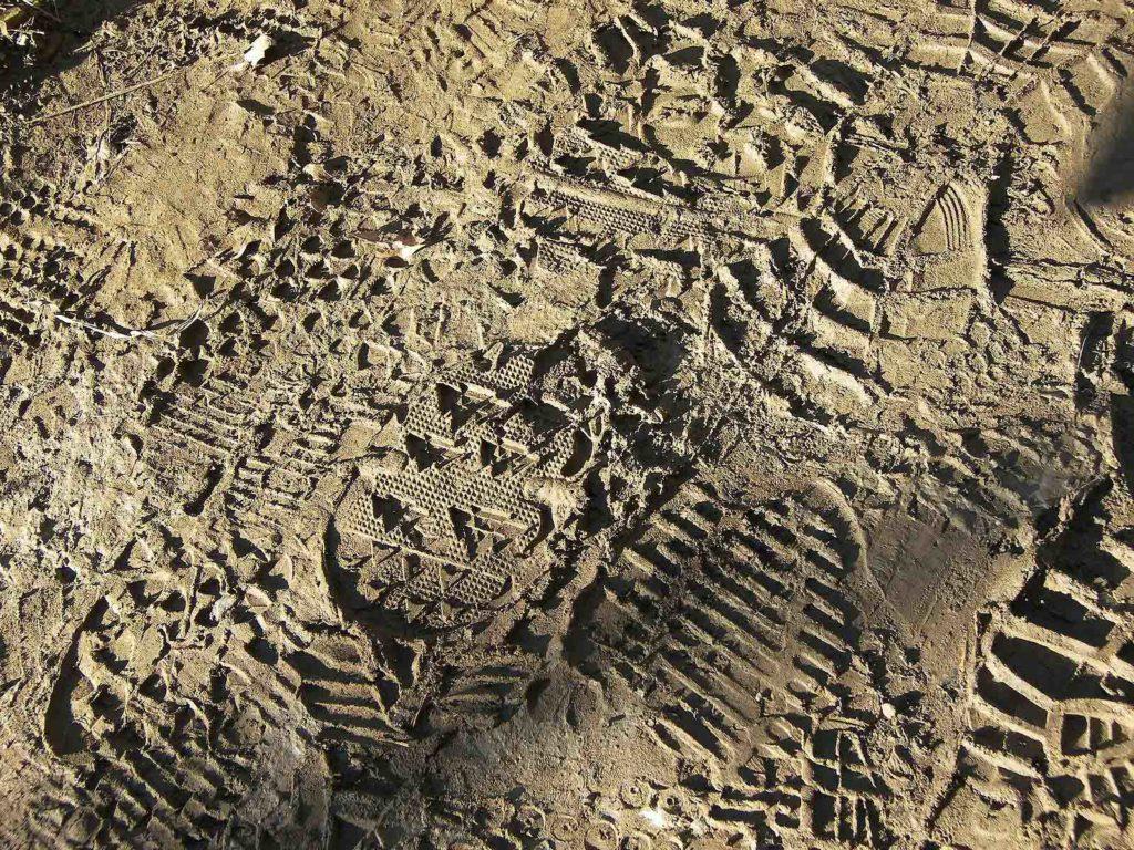 Hiking Boot Prints in Mud