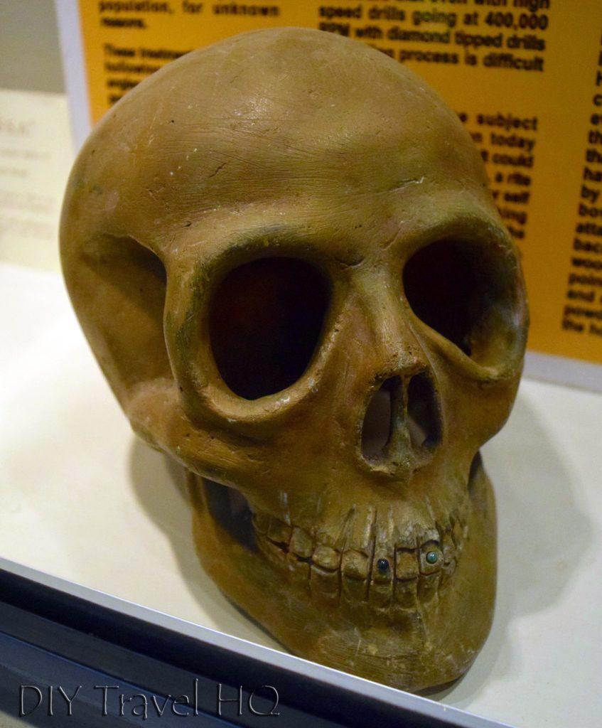 Quirigua Skull with Jade Teeth