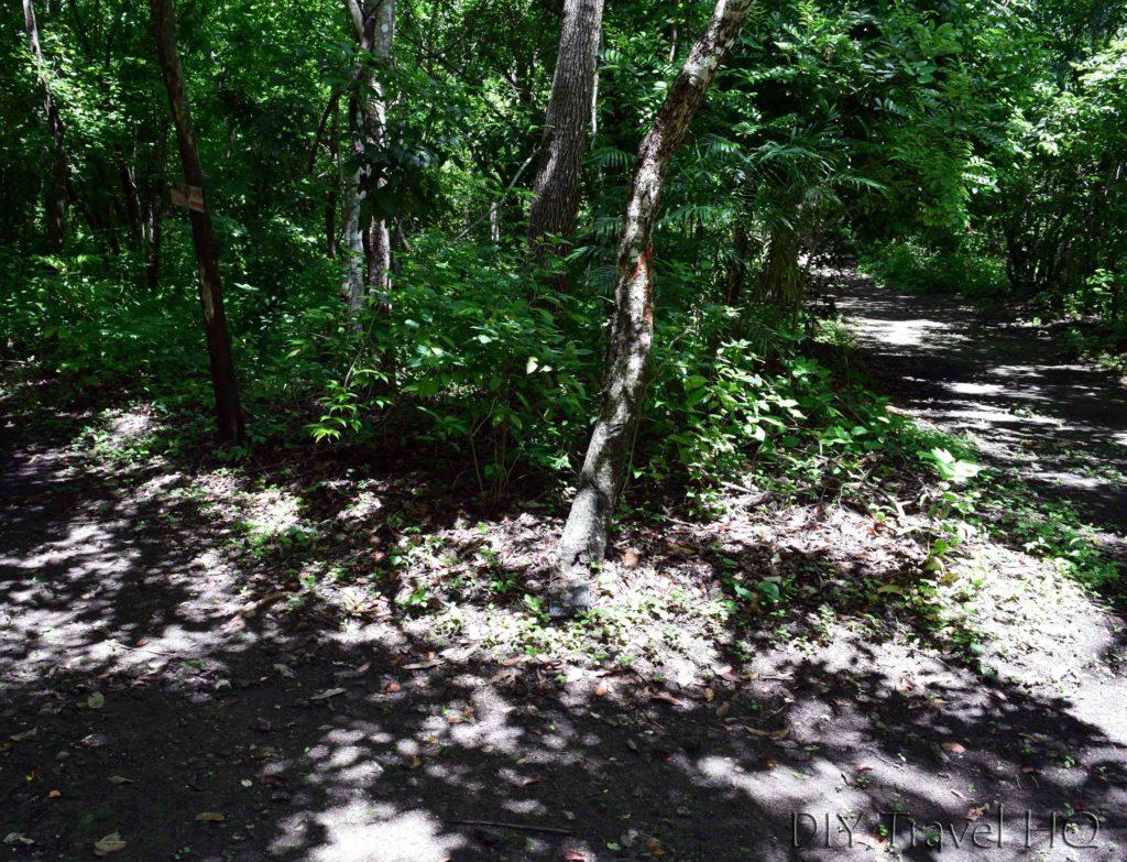 San Miguel Loop Path