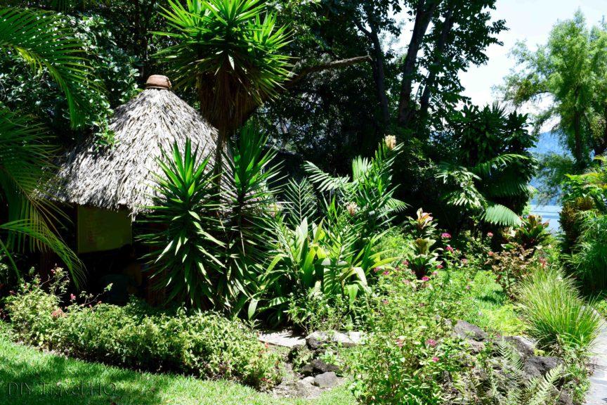 San Pedro Spanish School garden