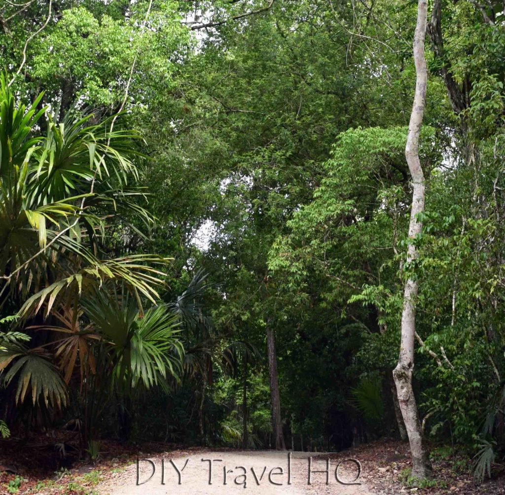 Tikal Entrance Path