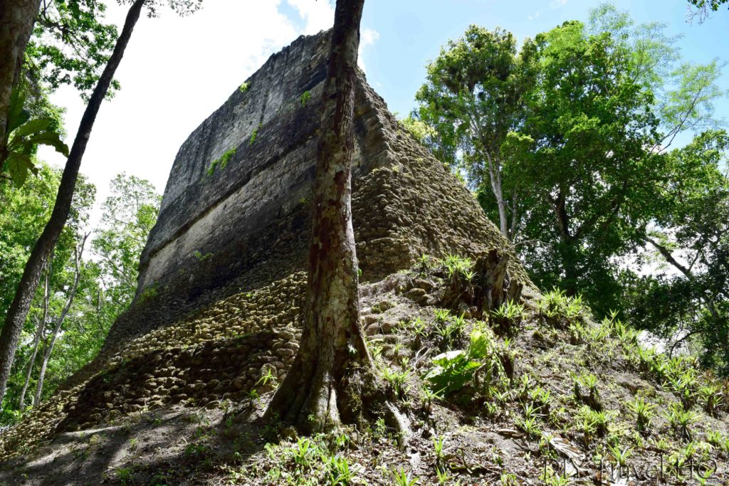 Tikal Temple 38 Side View