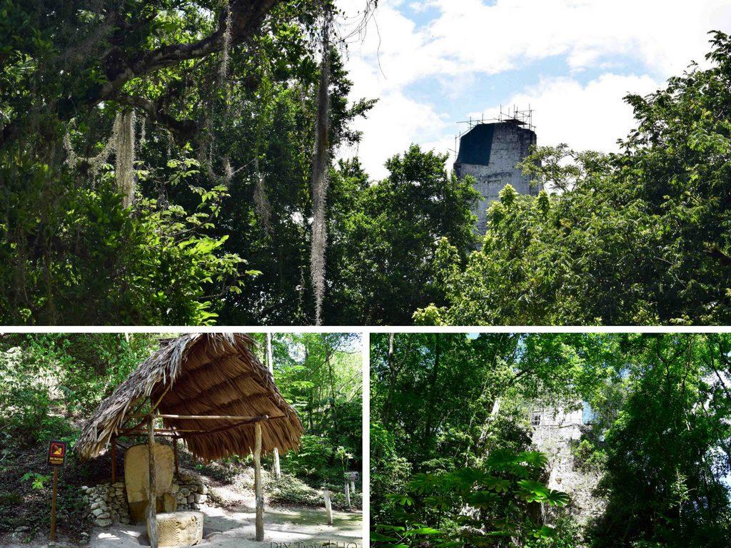 Tikal Temple III Stela 24 and Altar 7