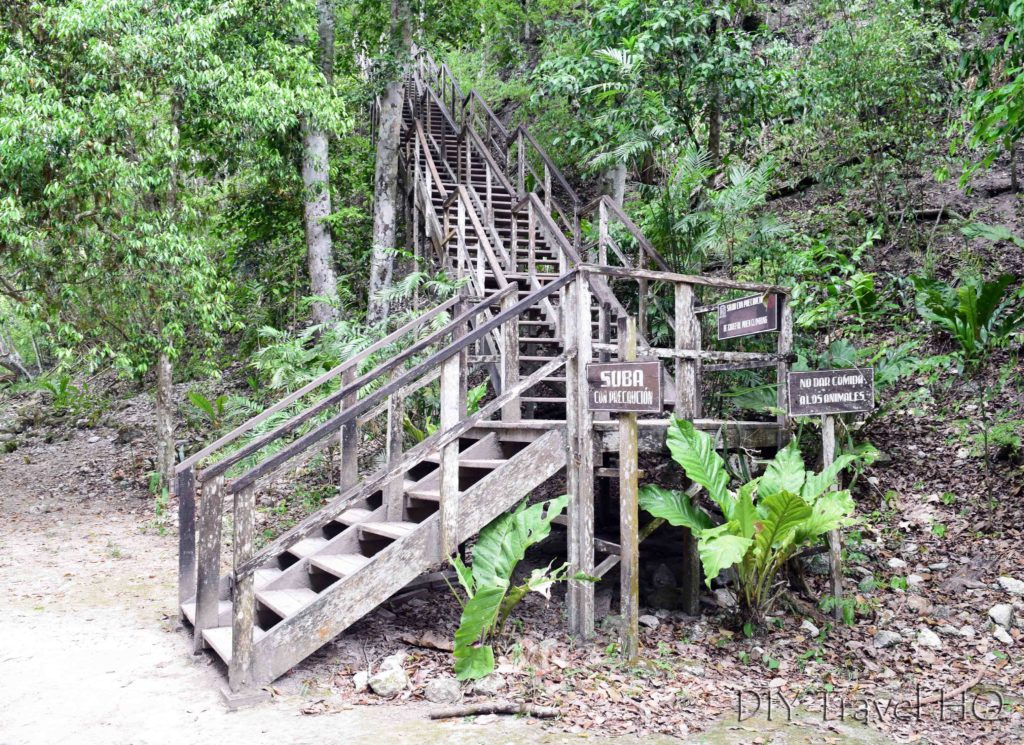 Tikal Temple IV Stairs