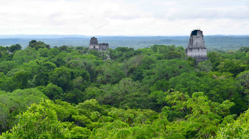 Tikal Temple IV View Over Jungle Canopy