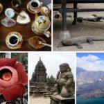 Top 5 Unique Travel Experiences in Indonesia